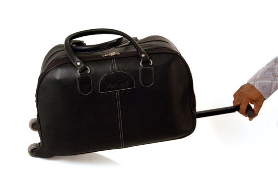 Executive & Travel bags